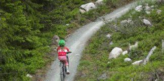Cykelfrämjandet organisationsbidrag 2020
